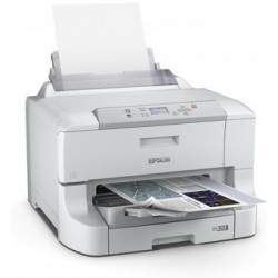 Escaner produccion epson...